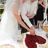 Hochzeitstorten und Cupcakes backen